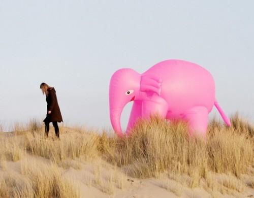 10_index-elephantdune