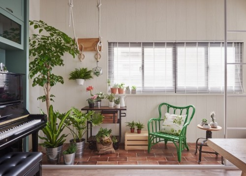 hao-design-indoor-plants-apartment-taipei-gardenista-1-4-e1453487181755