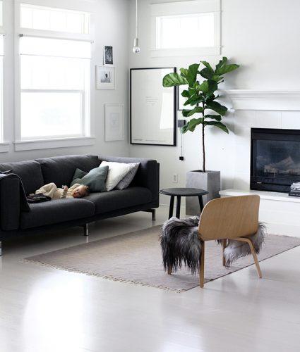 el verde y la madera zona tv